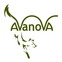 Avanova Design