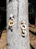 Drei-Ring-Ohrschmuck